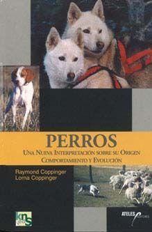Perros, una nueva interpretación sobre su origen, comportamiento y evolución