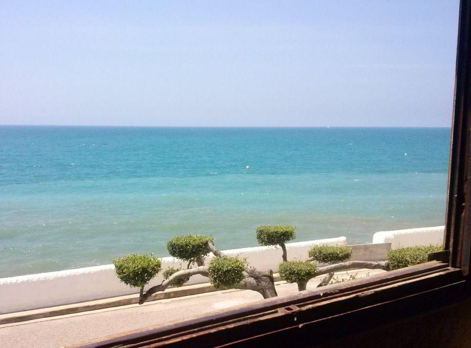 cerca del mar, agua de mar